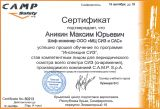 Сертификат CampSafety Аникин Максим